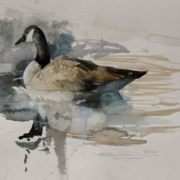 """Portrait of Canadian Goose  ● 11"""" x 14"""" ● Watercolor (no frame) ● $200"""
