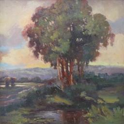 "Hilltop Trees ● 24"" x 24"" ● Oil ● $2800"