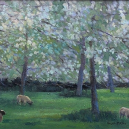 "Lake District Lambs ● 16"" x 20"" ● Oil ● SOLD"