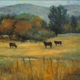 "Cows in the Meadow (Midway) ● 16"" x 20"" ● Oil ● $1600"