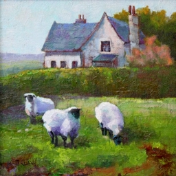 "Cotswold Sheep ● 12"" x 12"" ● Oil ● SOLD"