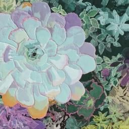 "Succulents ● 14"" x 18"" ● Acrylic ● $900"