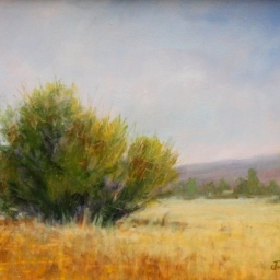 """Calm Summer Day ● 6"""" x 8"""" ● Oil ● SOLD"""