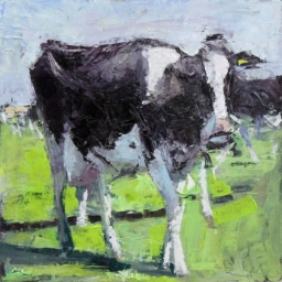 "Black Cow ● 12"" x 12"" ● Oil ● SOLD"