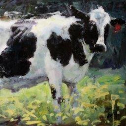 """White Cow ● 24"""" x 36"""" ● Oil ● $1200"""
