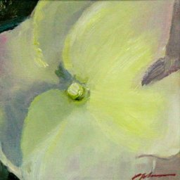 "Hyacinth Series 2021 #8  ● 5"" x 5"" ● Oil ● $195"