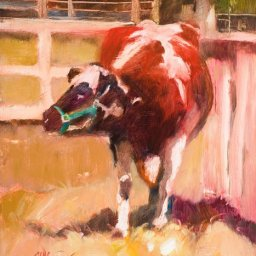 "Brown and White Cow ● 8"" x 10"" ● Oil ● $450"