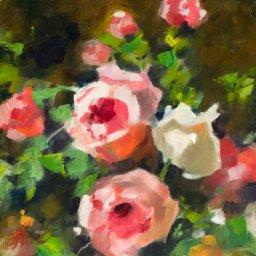"""Garden Roses ● 8"""" x 8"""" ● Oil ● $400"""