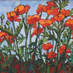 "The Neighbors Poppies ● 16"" x 20"" ● Oil ● SOLD"