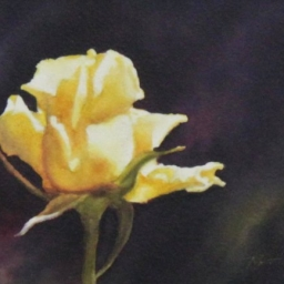 """Sun Spots ● 6.5"""" x 8.5"""" ● Varnished Watercolor ● SOLD"""
