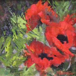 "Poppies ● 8"" x 8"" ● Oil ● SOLD"