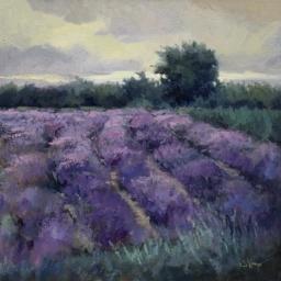 "Purple & Sage ● 16"" x 16"" ● Oil ● SOLD"