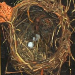 """Nest ● 8"""" x 10"""" ● Oil ● SOLD"""