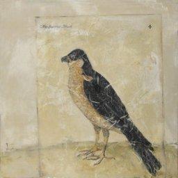 """The Sparrow Hawk ● 20"""" x 20"""" ● Mixed Media ● $900"""